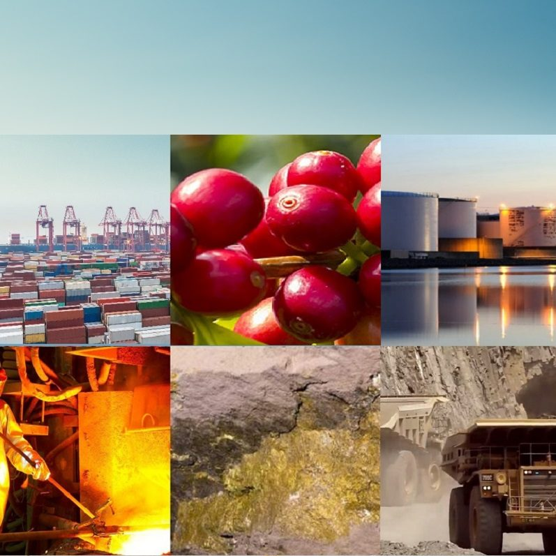 CommodityTrading.International trading physical commodities